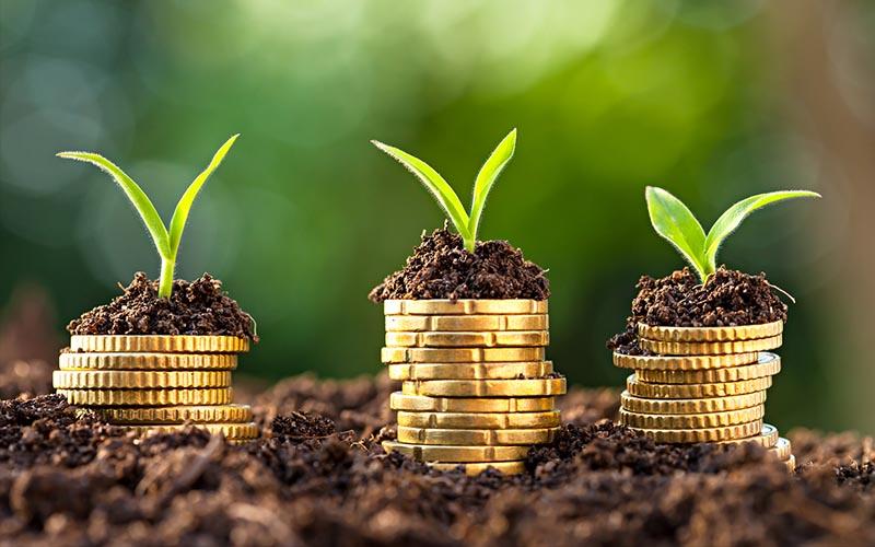 تحقق ۳۸۰ میلیاردتومان سرمایه گذاری در بخش کشاورزی استان همدان