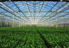 ساخت بزرگترین شهرک گلخانهای غرب کشور در ملایر