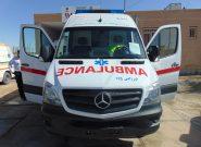 ۸ دستگاه آمبولانس به ناوگان اورژانس استان همدان افزوده شد