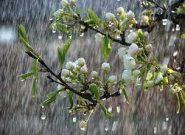 کاهش ۴۲ درصدی بارش باران در همدان