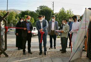 افتتاح نخستین نمایشگاه کسب و کار خرد خانگی در همدان